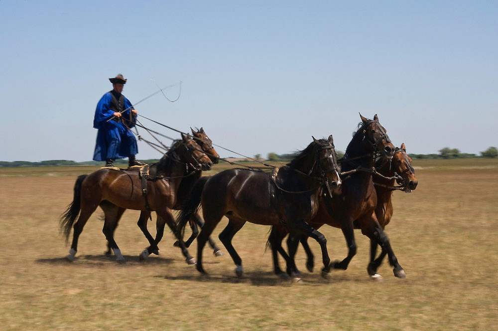 Typical Hungarian herdsman's riding ritual, Hortobagy National Park, Hungary