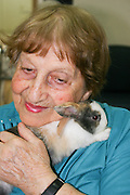 Israel, Rehovot, Old age day care centre pensioner taking care of a pet rabbit as part of their daily activities