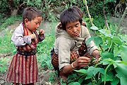 Namgay and Nalim's family in Shingkhey Village, Bhutan. Nalim picks beans as her grandchild looks on. From Peter Menzel's Material World Project that showed 30 statistically average families in 30 countries with all their possessions.