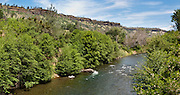 Butte Creek (93 miles long) flows through a scenic volcanic canyon in Butte County, California, USA. Chinook salmon and steelhead runs have been restored to the stream. Panorama stitched from 2 overlapping photos.