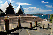 Sydney Opera House, viewed from the Tarpeian Way Steps. Bennelong Point, Sydney, Australia