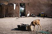 Kinderen spelen in Joal-Fadiouth buiten op straat