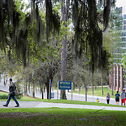 University of Florida-New Campus