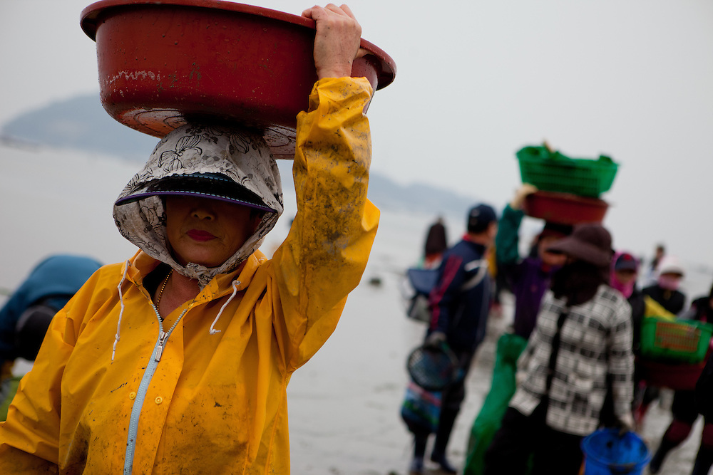"Women carrying pots with mussels and seaweet on their heads at the open ""Mysterious Sea Road"" in Hoedong shore (Jindo island). Jindo is the 3rd biggest island in South Korea located in the South-West end of the country and famous for the ""Mysterious Sea Route"" or ""Moses Miracle"". Every spring thousands flock to the shores of Jindo to walk the mysterious route that stretches roughly three kilometers from Hoedong to the distant island of Modo. Materializing from the rise and fall of the tides, the divide can reach as wide as forty meters."