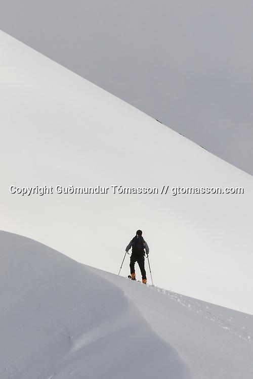 Damian ascending mt. Lambárhnjúkur 1027m. Hvalvatnsfjörður, Iceland.