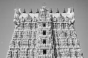 Gopuram of Thanumalayan Temple?, Suchindram, Kanyakumari, Tamil Nadu