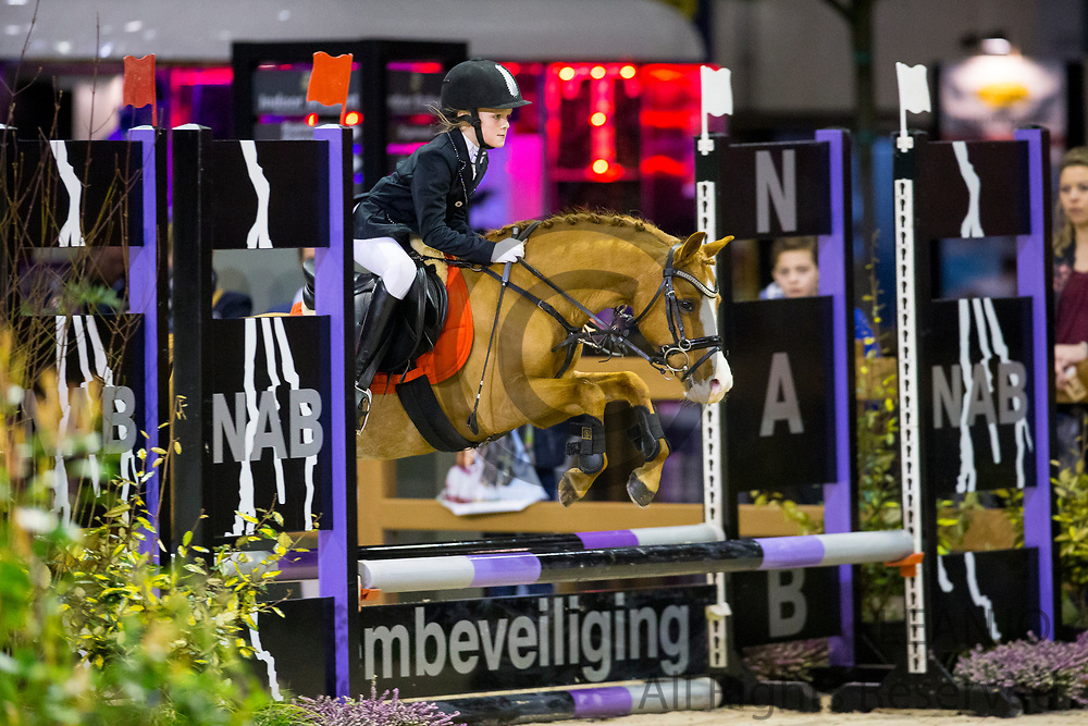 Diede Meulepas - Brunnie<br /> Indoor Brabant 2017<br /> © DigiShots