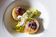 BRENDAN FITTERER  |  Times<br /> Diver Scallops with bacon jam and preserved meyer lemon salad prepared by Chef Paul Syms at Dulcet Restaurant &amp; Lounge in downtown New Port Richey.