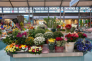 Flower stall at the Municipal fruit and vegetable market at Figueira da Foz, Portugal