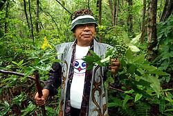La maggior parte della popolazione indigena Ainu vive nell' Isola di Hokkaido e secondo gli antropologi &egrave; origine caucasica. Probabilmente arriv&ograve; dalla Siberia ed ora se ne stimano circa 70.000. Il loro destino &egrave; spesso paragonato a quello degli indiani d'America.Dopo numerosi tentativi di cancellarne la cultura ora- soprattutto dal 1997-  c'&egrave; una rivalutazione delle loro tradizioni e grazie ad appositi fondi sono nate numerosi centri di ricerca ed associazioni culturali dove si insegna una lingua che sta scomparendo. Nella servizio vediamo un ainu  -purosangue che raccoglie il cibo nel bosco, prega per il buon  raccolto e porta il raccolta all propria donna che lo cucina assieme ad una testa di salmone. Ci troviamo poco fuori Sapporo in un villaggio studi con capanne, musei di strumenti ed abiti tipici.<br /> &copy; Paolo della Corte - AGF