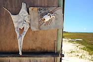 Detalle de un letrero donde venden langostas en Cayo Pirata. Archipiélago de Los Roques, 29-09-06. El Parque Nacional Los Roques se encuentra a 176 kilómetros al norte de la ciudad de Caracas y constituye uno de los reservorios naturales más grandes del Caribe. Con 42 islotes, es considerado el parque marino más grande de América Latina. (Iván González)