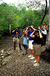 Costa Rica: Nature tour in Tropical Rain Forest..Photo #: costar102..Photo copyright Lee Foster, 510/549-2202, lee@fostertavel.com, www.fostertravel.com.