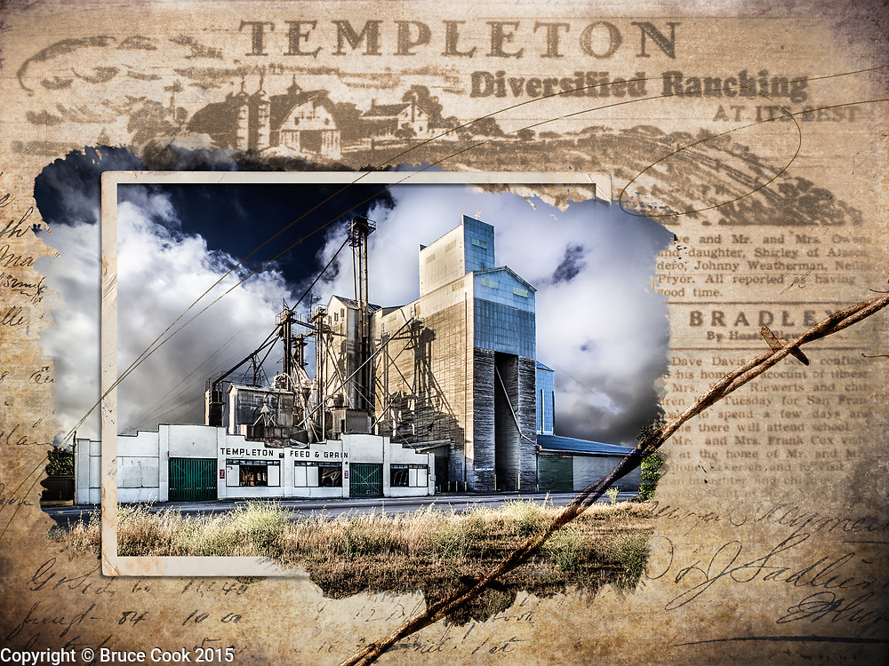 Visions of Templeton