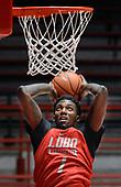 Lobo Basketball Practice Summer