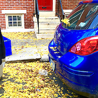 Ginko leaves collect atop a car and the street in the Old City neighborhood of Philadelphia November 18, 2015.