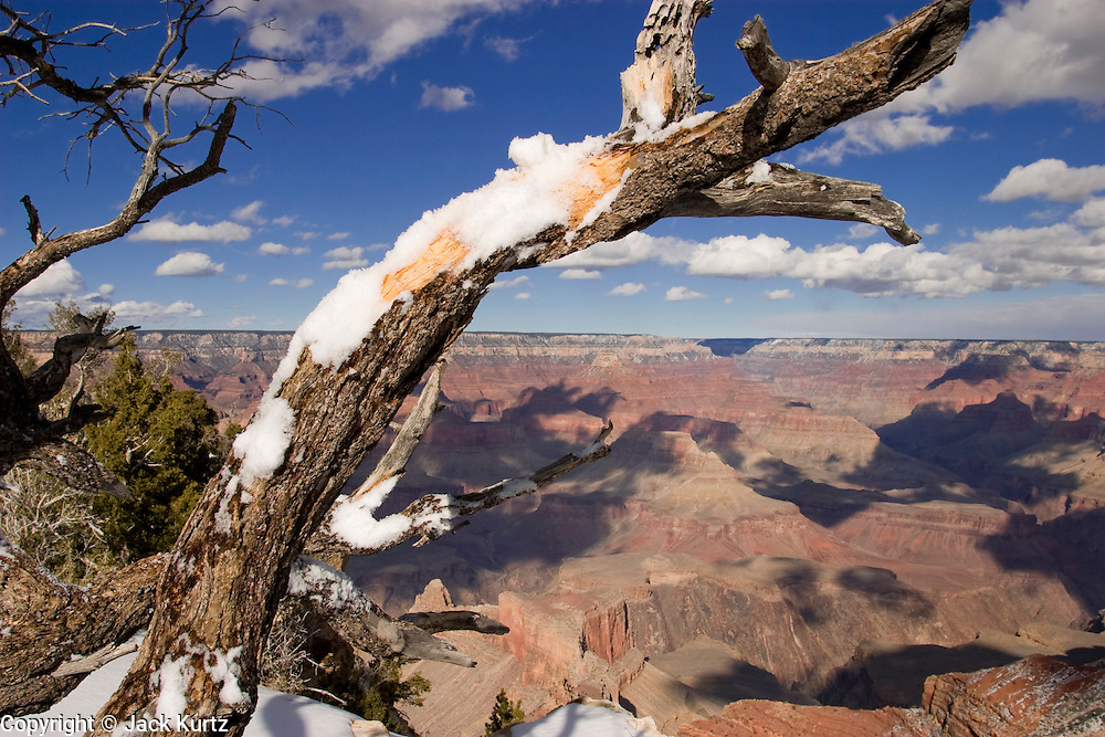 07 FEBRUARY 2004 -- GRAND CANYON NATIONAL PARK, AZ: Snow on a tree branch of the South Rim of the Grand Canyon frames the North Rim of the Grand Canyon National Park north of Flagstaff, AZ. The Grand Canyon is one of the most frequently visited national parks in the United States. PHOTO BY JACK KURTZ