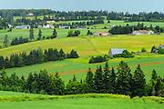 Countryside of farmland and rolling hills<br /> North Wiltshire<br /> Prince Edward Island <br /> Canada