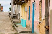 Santa Maria do Salto_MG, Brasil...Cachorro na porta de uma casa em Santa Maria do Salto, Minas Gerais...A dog under the door in Santa Maria do Salto, Minas Gerais...Foto: LEO DRUMOND / NITRO