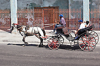 Horse and carts still make an appearance on the streets of Havana.