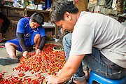 "06 MARCH 2013 - BANGKOK, THAILAND:  Men sort chilies in a market in Bangkok. Thailand's economic expansion since the 1970 has dramatically reduced both the amount of poverty and the severity of poverty in Thailand. At the same time, the gap between the very rich in Thailand and the very poor has grown so that income disparity is greater now than it was in 1970. Thailand scores .42 on the ""Ginni Index"" which measures income disparity on a scale of 0 (perfect income equality) to 1 (absolute inequality in which one person owns everything). Sweden has the best Ginni score (.23), Thailand's score is slightly better than the US score of .45.  PHOTO BY JACK KURTZ"