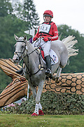 KILRONAN ridden by Paul Tapner at Bramham International Horse Trials 2016 at  at Bramham Park, Bramham, United Kingdom on 11 June 2016. Photo by Mark P Doherty.
