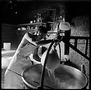 Alle packen an: Alpsommer auf Alp Eischoll ob Turtmann, Wallis, beim Käser Martin Amman und seinem Familienbetrieb. © Romano P. RiedoAlle packen an: Alpsommer auf Alp Eischoll ob Turtmann, Wallis, beim Käser Martin Amman und seinem Familienbetrieb. © Romano P. RiedoKäser Martin Amman verarbeitet auf der  Eischoll-Alp der Genossenschaft Turtmann Sommer für Sommer unter einfachsten Bedingungen mehrere Tonnen Milch zu Raclette-käse. © Romano P. Riedo