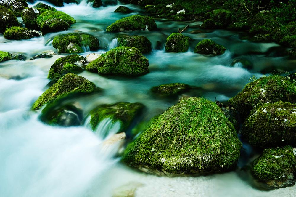 River Lepenjica, cascades, moss-grown stones in water<br /> Triglav National Park, Slovenia<br /> June 2009