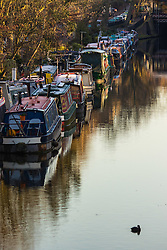 Little Venice, London, February 19th 2016. The first rays of sunshine refect of narrowboats on the Regent's Canal as the sun rises on a clear, cold February morning. &copy;Paul Davey<br /> FOR LICENCING CONTACT: Paul Davey +44 (0) 7966 016 296 paul@pauldaveycreative.co.uk
