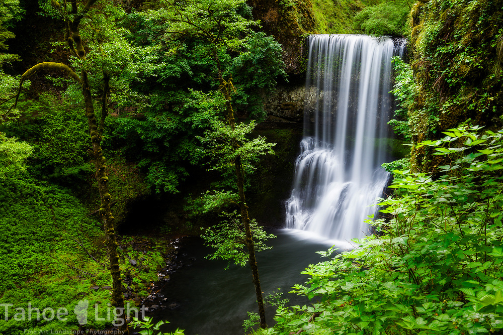 Lower North Falls at the Silver Falls State park in northern Oregon. The lush greenery and waterfalls of the Pacific Northwest are a must visit.