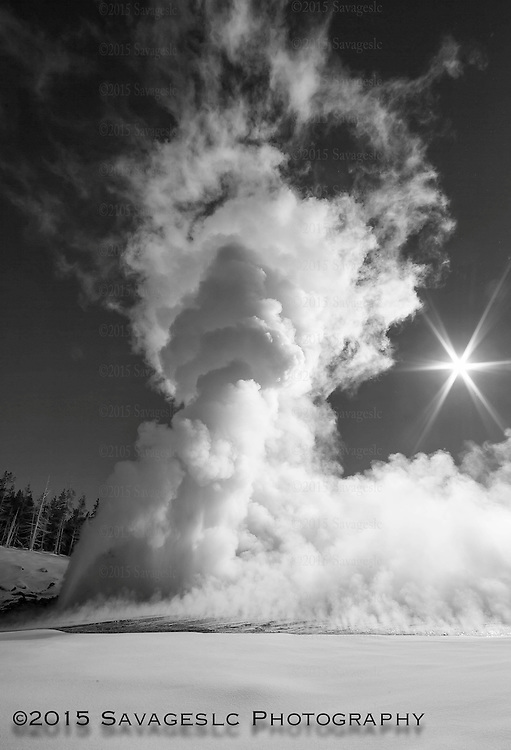Grand geyser at full eruption in black and white. January 2015