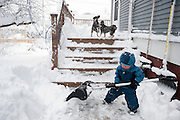 Holden Miller, 2, helps his father, Jeff Miller, shovel out the Miller/Stute house after a winter storm left 15-plus inches of snow in Madison, Wis., on Dec. 9, 2009. In the background, family dogs Spanky and Buckley tussle on the deck.