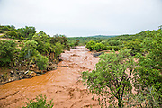 Flash flood, brown muddy water, near Lake Eyasi, Tanzania