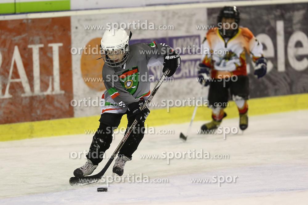 Youth ice hockey tournament Zmajcek 2012 by HK Olimpija, on December 1-2, 2012 in Hala Tivoli, Ljubljana, Slovenia. (Photo By Matic Klansek Velej / Sportida.com)