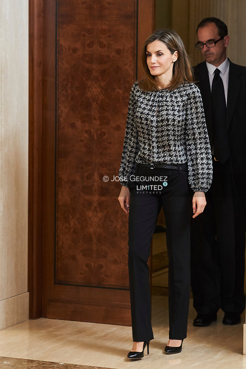 Queen Letizia of Spain attended an audience  to students participating in the 11st edition of the program 'Scholarships Europe'  University Francisco de Vitoria at Zarzuela Palace on July 15, 2016 in Madrid
