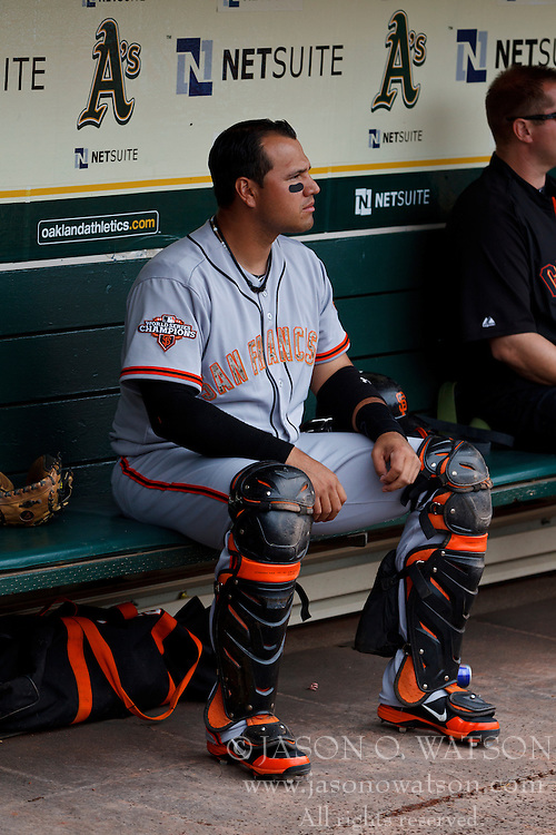 OAKLAND, CA - MAY 27: Guillermo Quiroz #12 of the San Francisco Giants sits in the dugout before the interleague game against the Oakland Athletics at O.co Coliseum on May 27, 2013 in Oakland, California. The Oakland Athletics defeated the San Francisco Giants 4-1. (Photo by Jason O. Watson/Getty Images) *** Local Caption *** Guillermo Quiroz