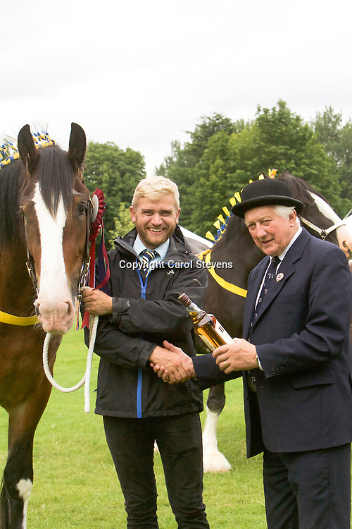 Paul Bedford's Gelding  ACLE THOMAS  3 years<br /> 1st  Three year old or over, Mare or Gelding Class with Judge Mr A Wass<br /> Heavy Horse Champion