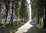 Afternoon sunlight pouring along a path in the San Michele cemetery island, Venice.  The overall scene looks toward the water gate with cemetery and offerings on either side of the poplar lined avenue.  In the distance, a figure in a red shirt seems to be about to vanish in the light.