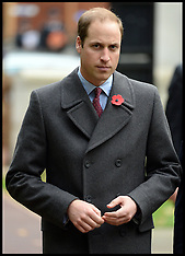 NOV 05 2013 PRINCE WILLIAM PROFILE
