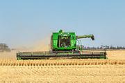 combine harvester harvesting golden barley