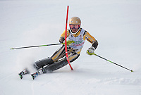 GSC Tecnica Cup Slalom first run February 1, 2014.  ©2104 Karen Bobotas Photographer