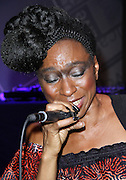 Wunmi performs during the Liquid Sound Lounge 20th Anniversary Masquerade event at the BAM Cafe in Brooklyn, New York on October 26, 2013.