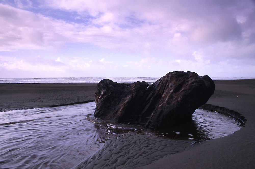 A large chunk of driftwood is half buried in the sand of this stormy northern california beach.