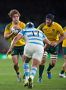 Twickenham. Great Britain,   Mike HOOPER, during, Semi Final. Australia vs Argentina  2015 Rugby World Cup,  Venue, Twickenham Stadium, Surrey England.   Sunday  25/10/2015   [Mandatory Credit; Peter Spurrier/Intersport-images]