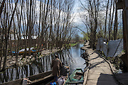 General views of destroyed properties and dead trees on the Dal Lake, Srinagar, Jammu and Kashmir, India, on 25th March 2015. Nearly 2500 villagers including Srinagar, the capital of the state of Jammu and Kashmir, was devastated by severe floods and landslides in September 2014 the worst in 60 years, displacing millions of people, many of them children. Photo by Suzanne Lee for Save the Children