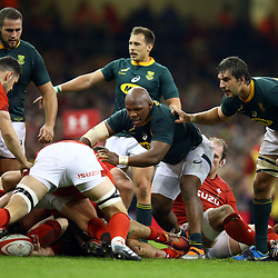 CARDIFF, WALES - NOVEMBER 24: Bongi Mbonambi and Eben Etzebeth of South Africa wait for Tomos Williams of Wales to clear the ball during the Castle Lager Outgoing Tour match between Wales and South Africa at Principality Stadium on November 24, 2018 in Cardiff, Wales. (Photo by Steve Haag/Gallo Images)