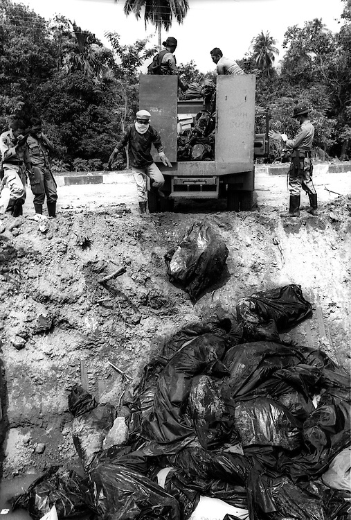 Convoys of trucks deliver newly recovered bodies from the Tsunami affected city of Banda Aceh to be dumped into mass graves. January 5 2005