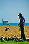 Hippy feeding pidgeons, Venice Beach, Los Angeles, California