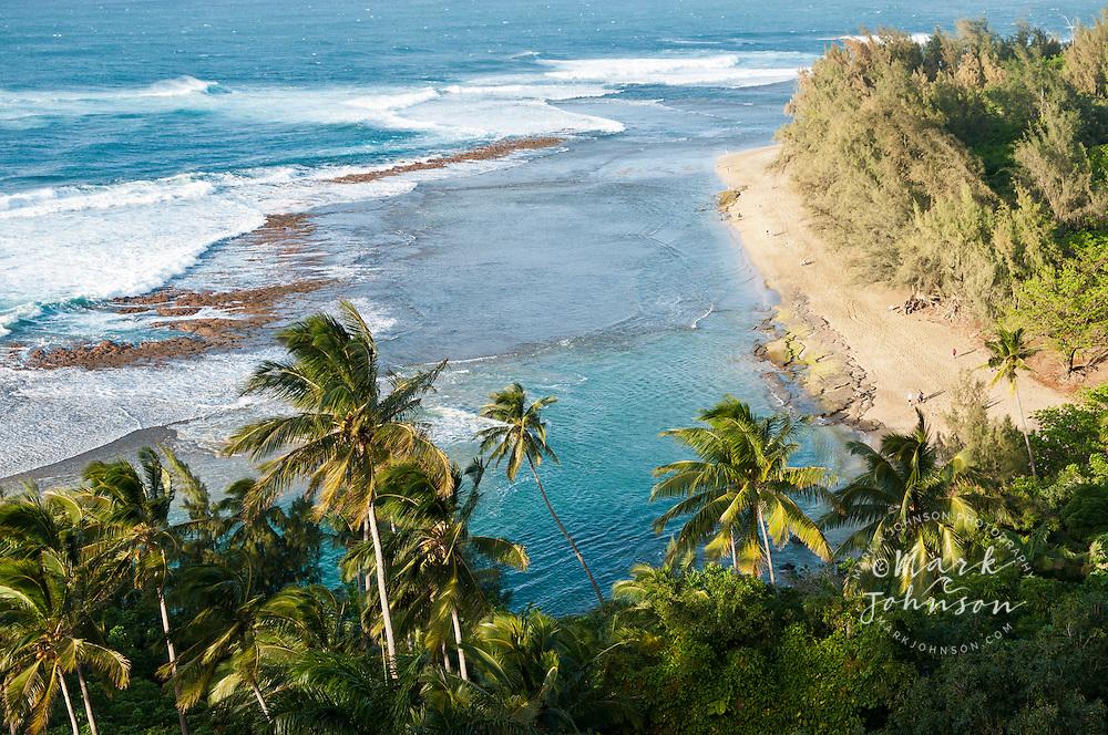 Coconut trees and lagoon at Ke'e Beach, Kauai, Hawaii