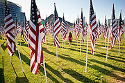 """10 SEPTEMBER 2011 - TEMPE, AZ:   A child runs through the """"Healing Field"""" in Tempe, AZ, Saturday. The """"Healing Field,"""" a display of 2,996 flags, one for each person killed in the September 11 terrorists attacks on the World Trade Center in New York City and Washington DC, have become an annual tradition in Tempe. The event is sponsored by the National Exchange Club.        PHOTO BY JACK KURTZ"""