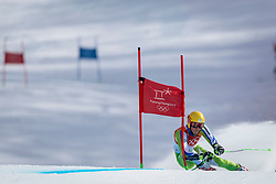 18-02-2018 KOR: Olympic Games day 9, Pyeongchang<br /> Alpine Skiing Men's Giant Slalom at Yongpyong Alpine Centre / Stefan Hadalin of Slovenia